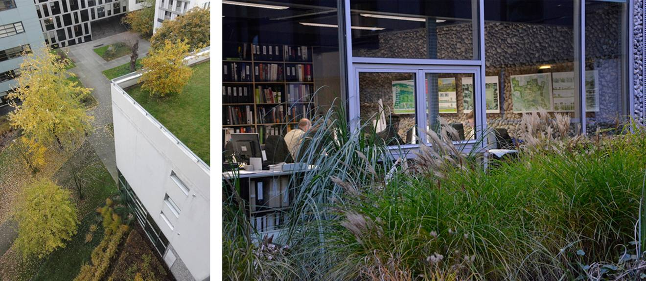 Nos bureaux empreinte bureau de paysages for Agence empreinte paysage